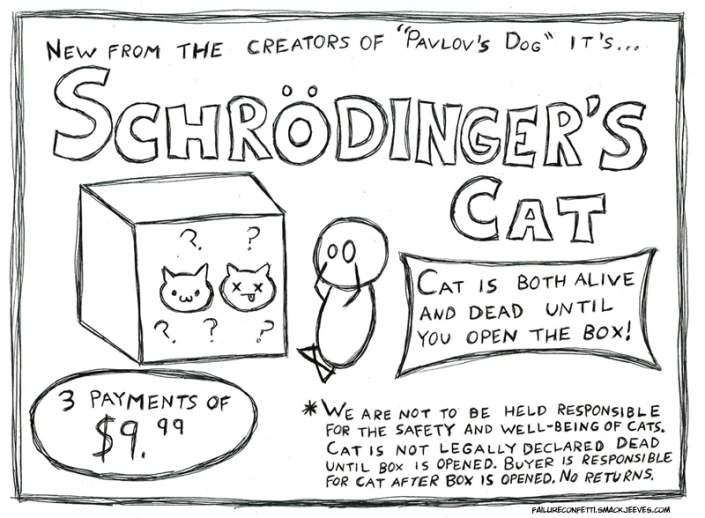 Schrodinger's Cat Image Two