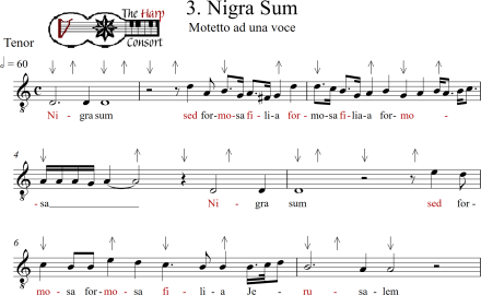 Nigra sum Good and Bad_0001
