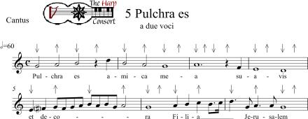 Pulchra es for Tactus_0001