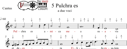 Pulchra es with Good and Bad_0001